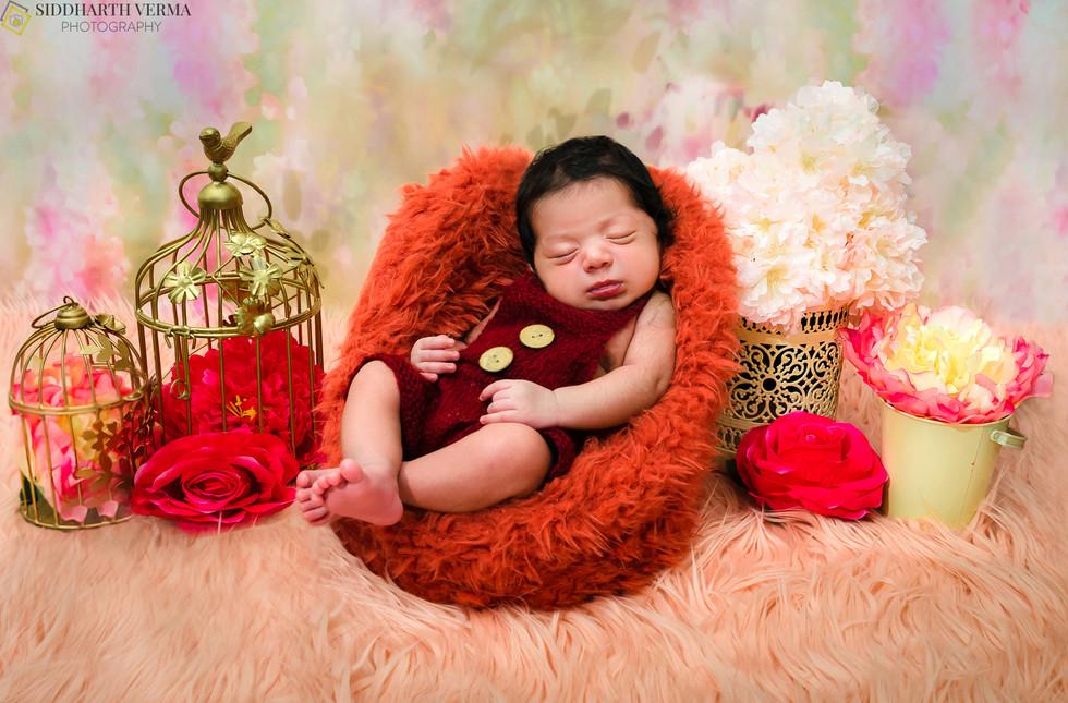 Newborn Photography in Delhi Noida Gurgaon.jpg