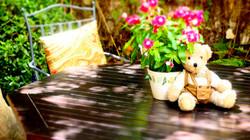 Gardenteddies6_edited