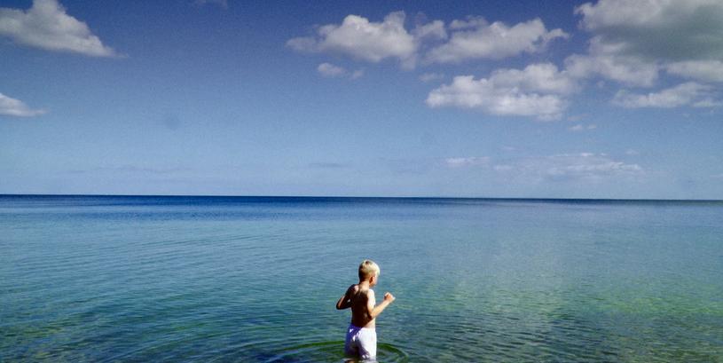 Arve i vandet