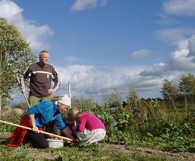 _Filmens billede_Familien i marken.png