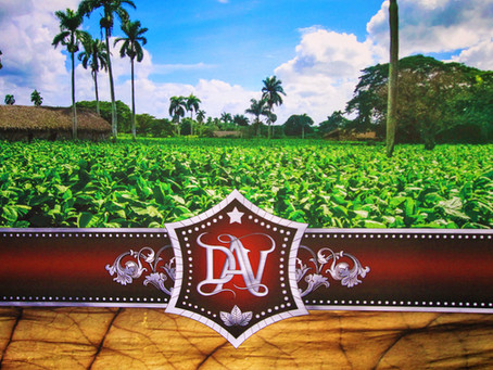 DAV Cigars Joins Privada Cigar Club