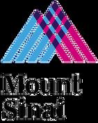 Mount_Sinai_hospital_logo.png