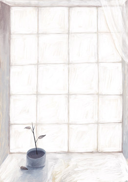 THE WINDOW AND THE PLANT
