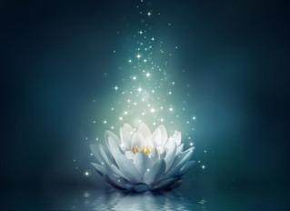 O despertar da espiritualidade