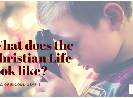 WHAT DOES THE CHRISTIAN LIFE LOOK LIKE?