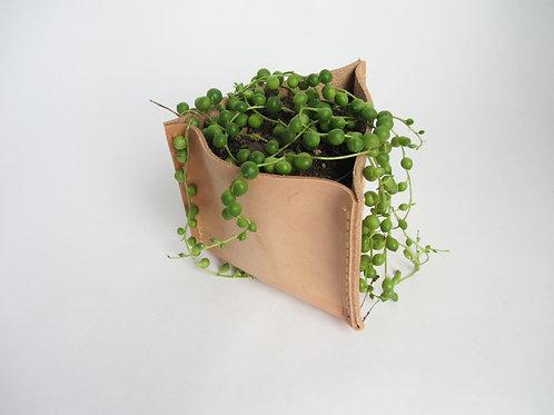 CECILIA planter