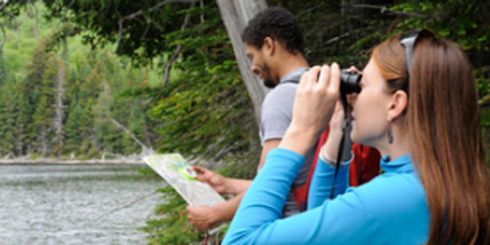 Birding and Wildlife Spotting