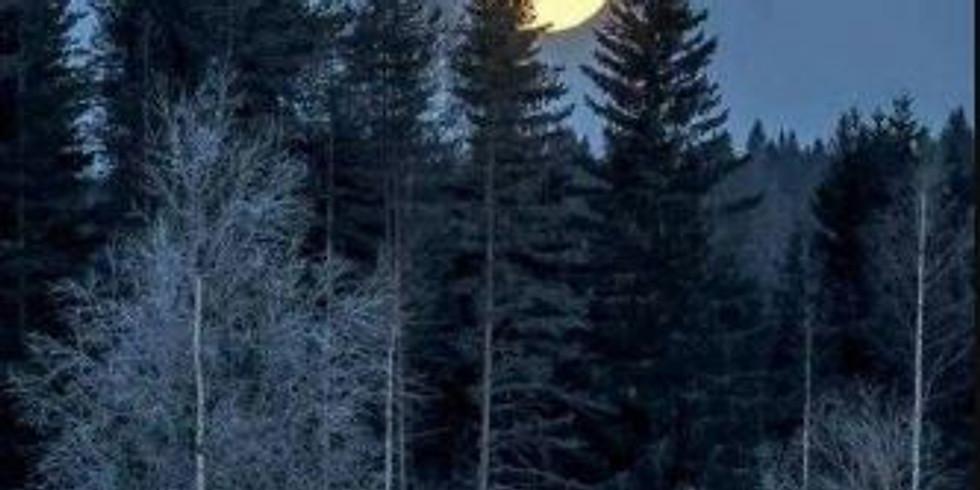 Canceled: Full Moon Hike