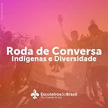 08.04 Diversidades Indigena-01.jpg