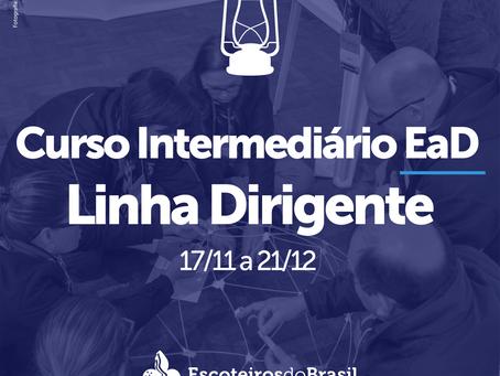 Curso Intermediário EaD - Linha Dirigente