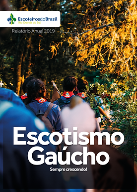 Relatório Regional 2020