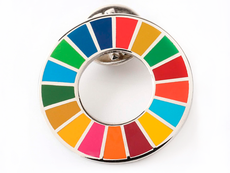 Pin dos ODS