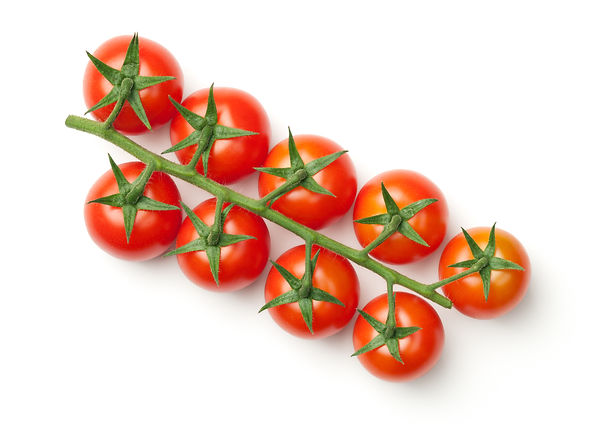 Cherry tomatoes on branch isolated on wh