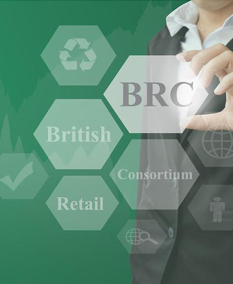 businesswoman showing presentation BRC(B