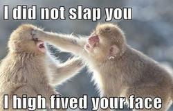 slap[1]