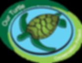 Our turtle conservation project sea turtle hatchery, Colombo, Sri Lanka