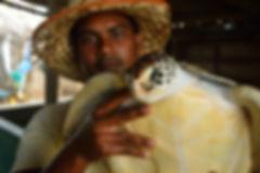 Turtle conservation Sri Lanka, OTCP