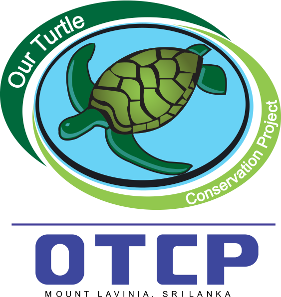 Our Turtle Conservation Project Sea Turtle Hatchery