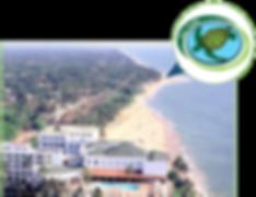 Tutle conservation Sri Lanka, OTCP