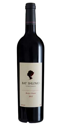 Bat Shlomo 2015