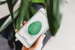 Egg App