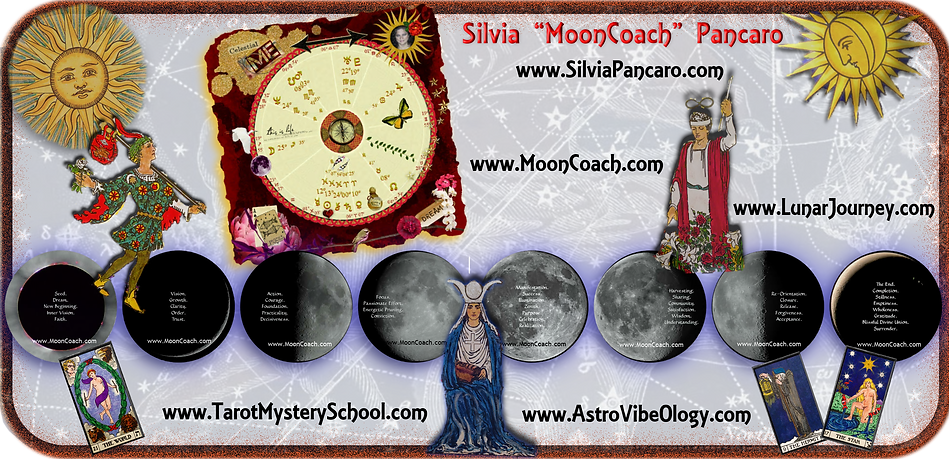 MoonCoach logo with websites 2.png