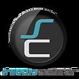 ps-logo-4.png