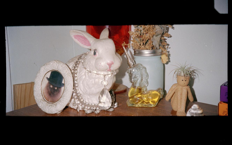 RabbitDeco.jpg