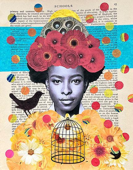 amanda and the songbird
