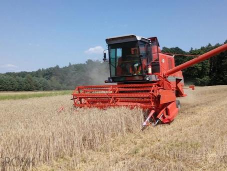 Jste připraveni na sklizeň??