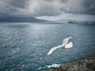 Title: Aran Islands