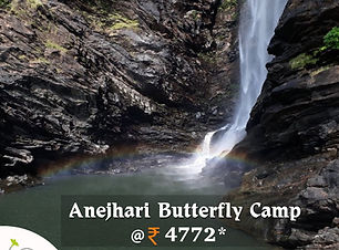 Anejhari Butterfly Camp.jpg