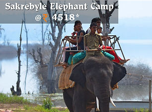 Sakrebyle Elephant Camp.jpg