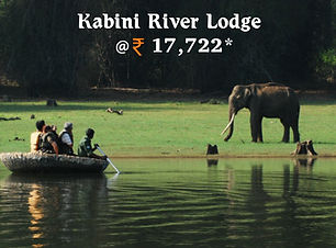 Kabini River Lodge.jpg