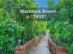 Blackbuck Resort.jpg