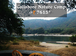 Gallabore Nature Camp.jpg