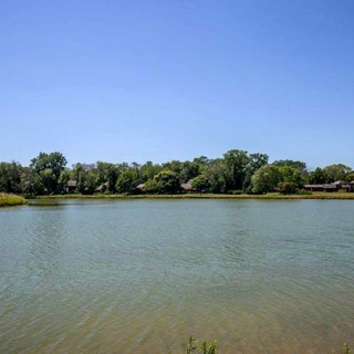 Lake Meadow.jpg