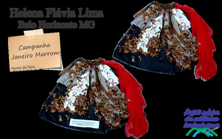 Helena Flávia Lima janeiro marrom.png