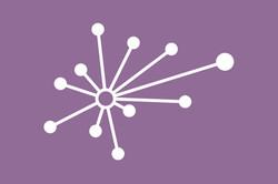 The Spark Institute Logo
