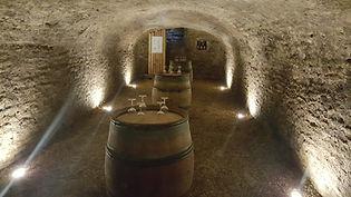 Le Domaine Jean-Marc Naudin vous accueille au domaine familial, dans son caveau pour une dégustatin de ses vins à Savigny-le-Beaune