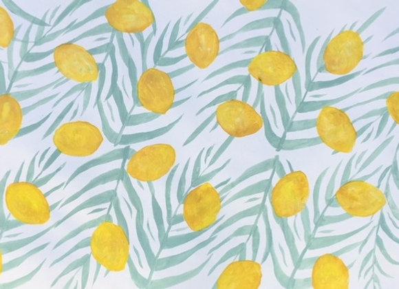 Lemon Palm
