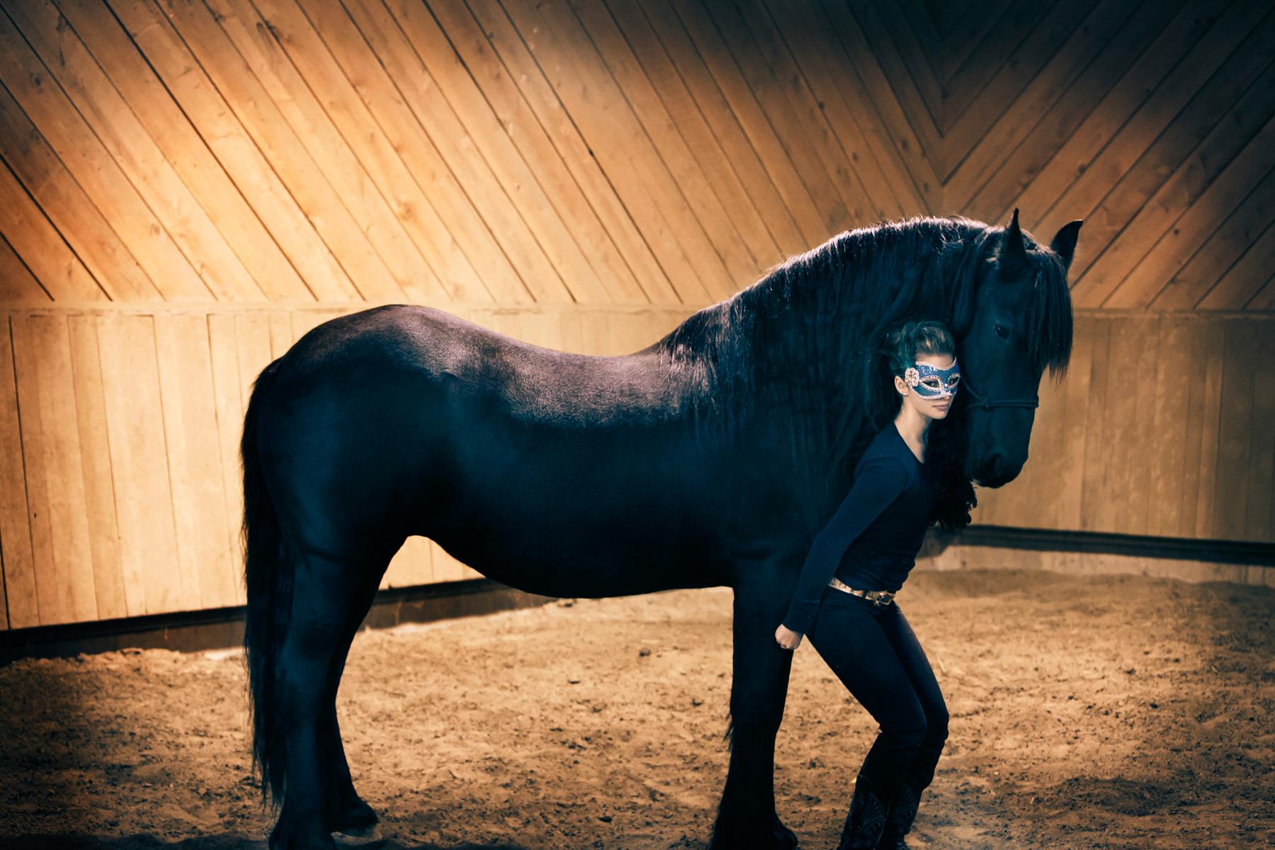 Equine_035.jpg