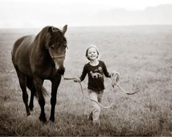 Equine_007.jpg