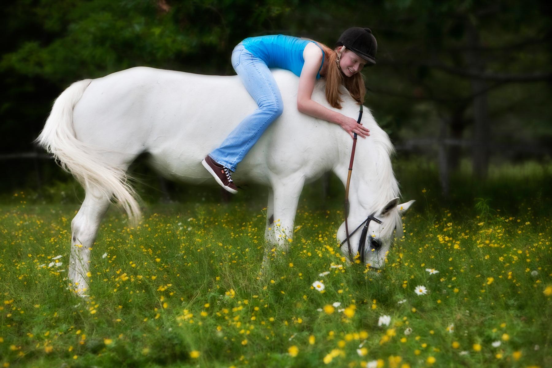 Equine_032.jpg