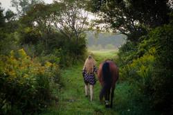 Equine_015.jpg