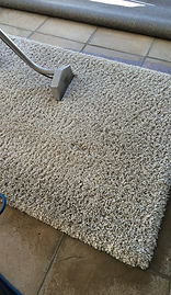 Rug cleaning in Sea Point