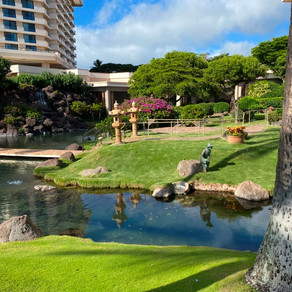 Nice Touches at the Maui Regency Hyatt Resort and Spa