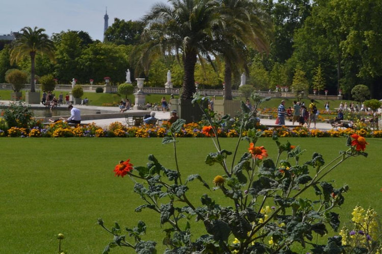 touillard garden.JPG
