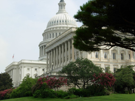 Political Thoughts - Impeachment Inquiry Variety