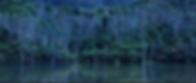 Capture d'écran 2019-05-05 à 20.42.44.pn